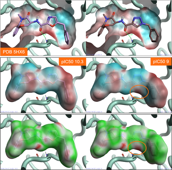 Figure 3: ESP and Electrostatic Complementarity maps for RIPK1 kinase active sites and ligands