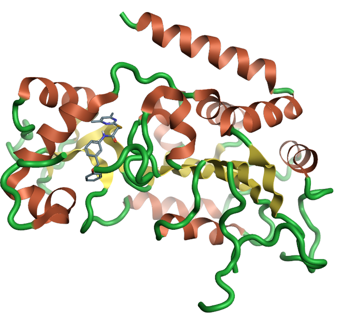Ribbon for the crystal structure 5yql human Sirtuin-2