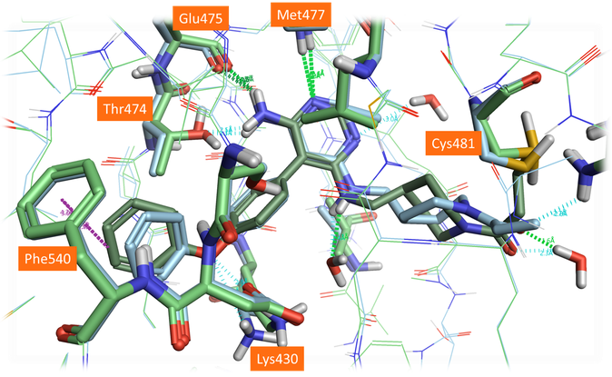 Crystal structure PDB: 6OMU