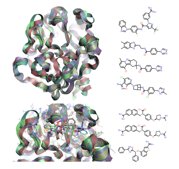 Crystal structures for Factor IXa modeled in Flare
