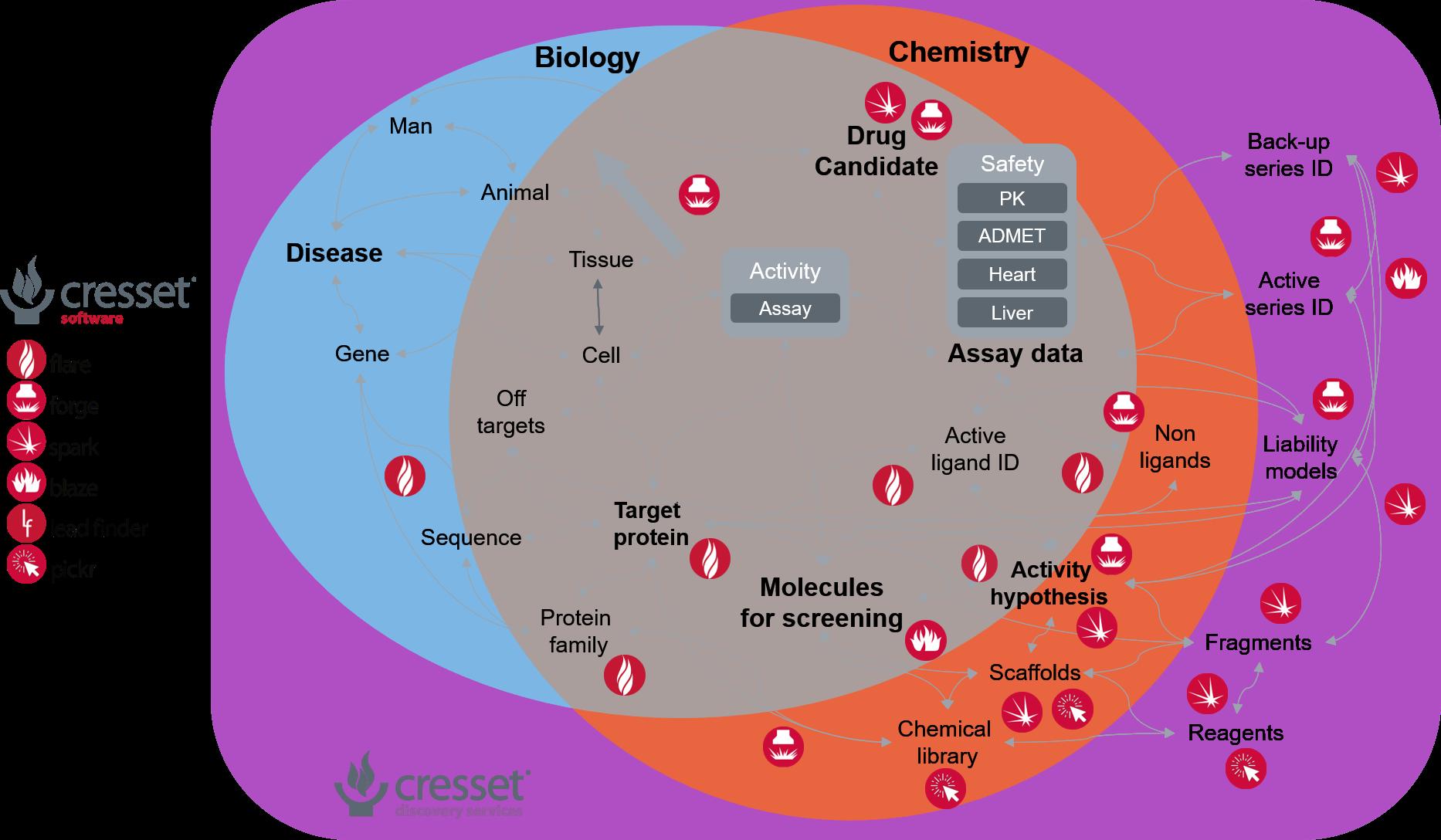 Biology Chemistry diagram