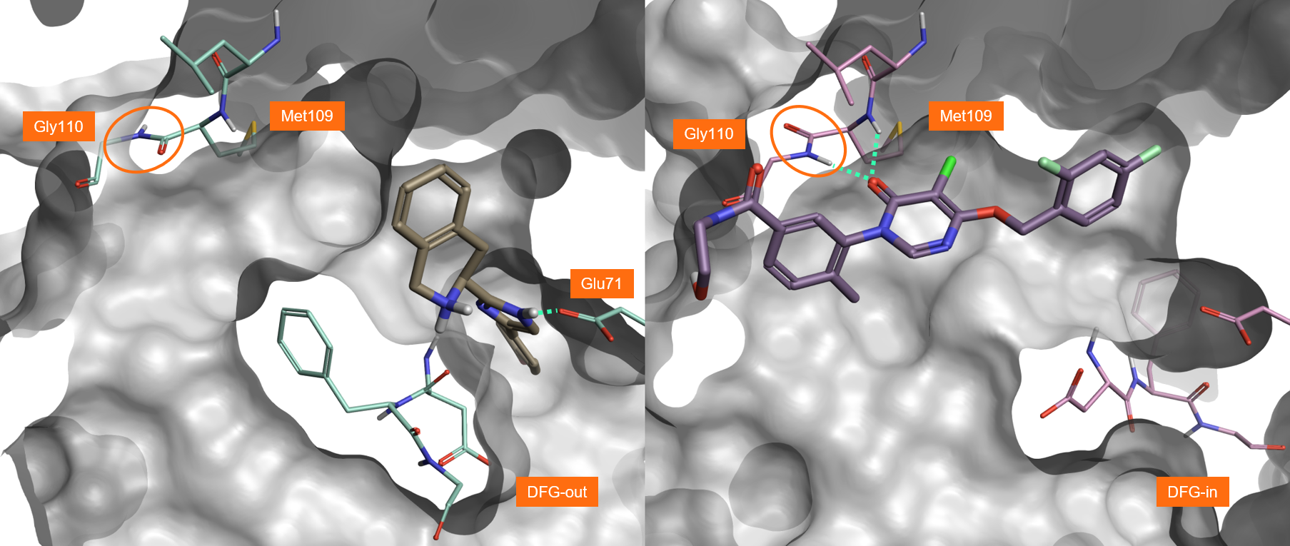 Figure2_3K3I and 3ROC protein_ligand complexes