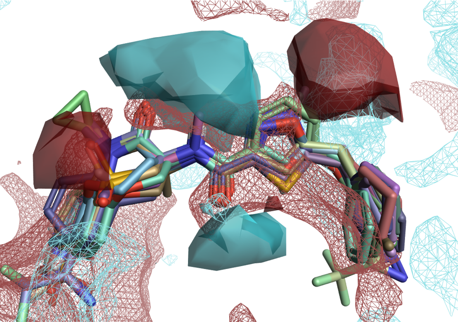 Figure 4: Solid surfaces: Activity Cliffs Summary of ligand electrostatics for a RIP1 kinase ligand series. Wireframe surfaces: protein interaction potentials for the RIP1 kinase protein