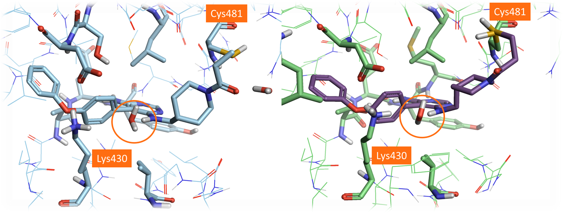 Crystal structure of Evobrutinib PDB:6OMU