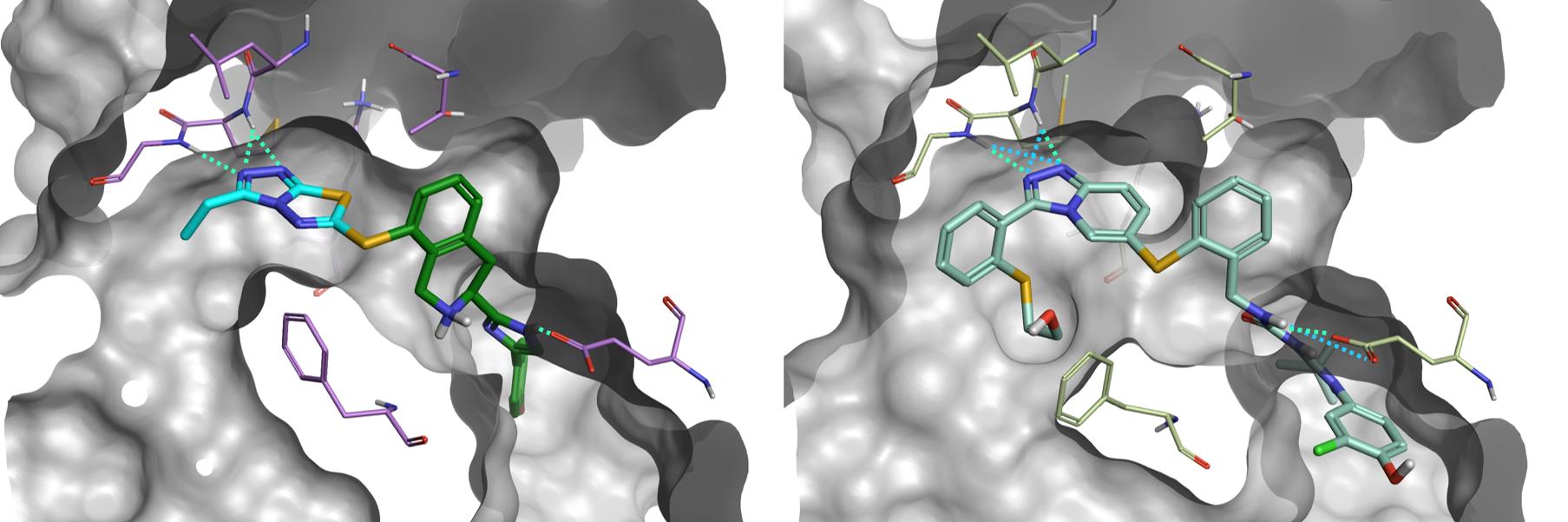 Figure6_Result 4 versus Pfizer compound
