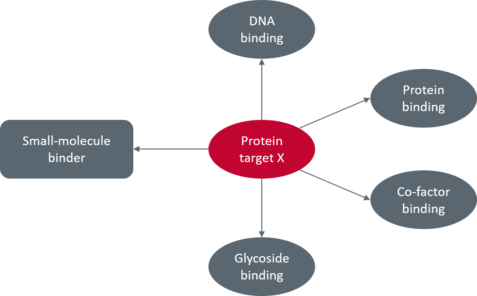 Figure 1_Possible partners for protein target X