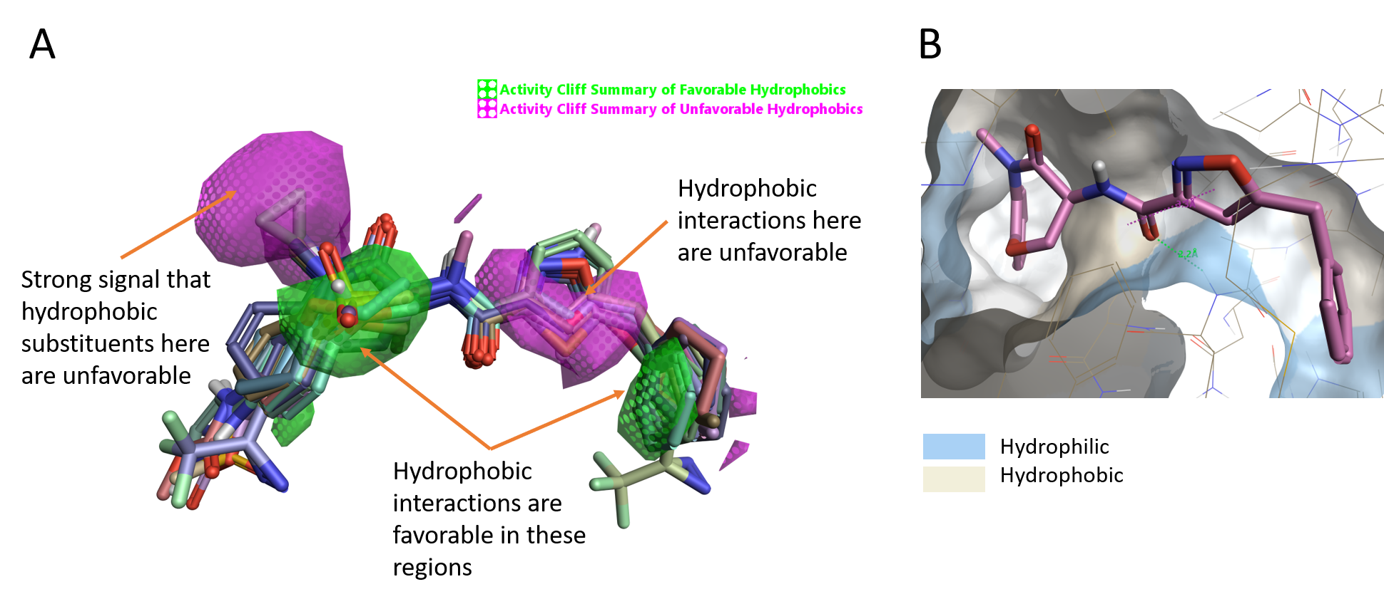 Figure 4_ Activity cliff summary of hydrophobics map; Molecular surface of RIPK1 colored by hydrophobicity