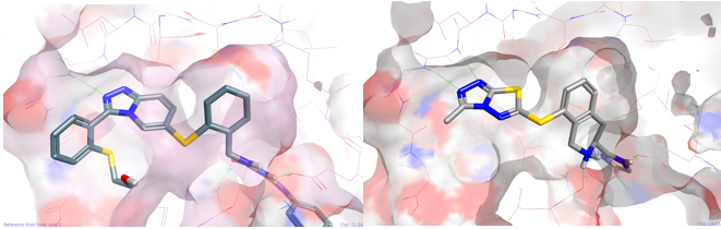 Left Pfizer ligand in PDB 2YIS right Spark output example 3 from the thiol reagent pool in the same protein