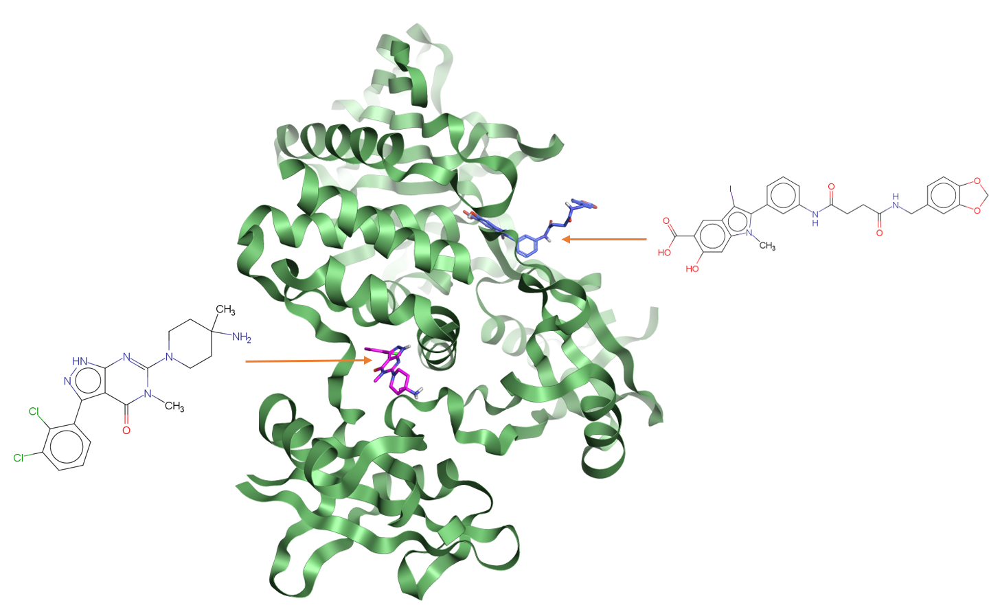 Phosphate binding site and allosteric binding site for Tyrosine-protein phosphatase non-receptor type 11