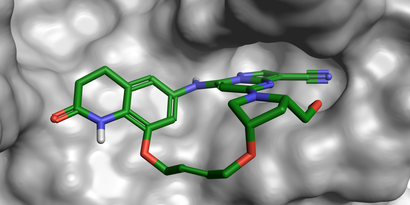 Macrocylcized ligand from PDB 5N1Z