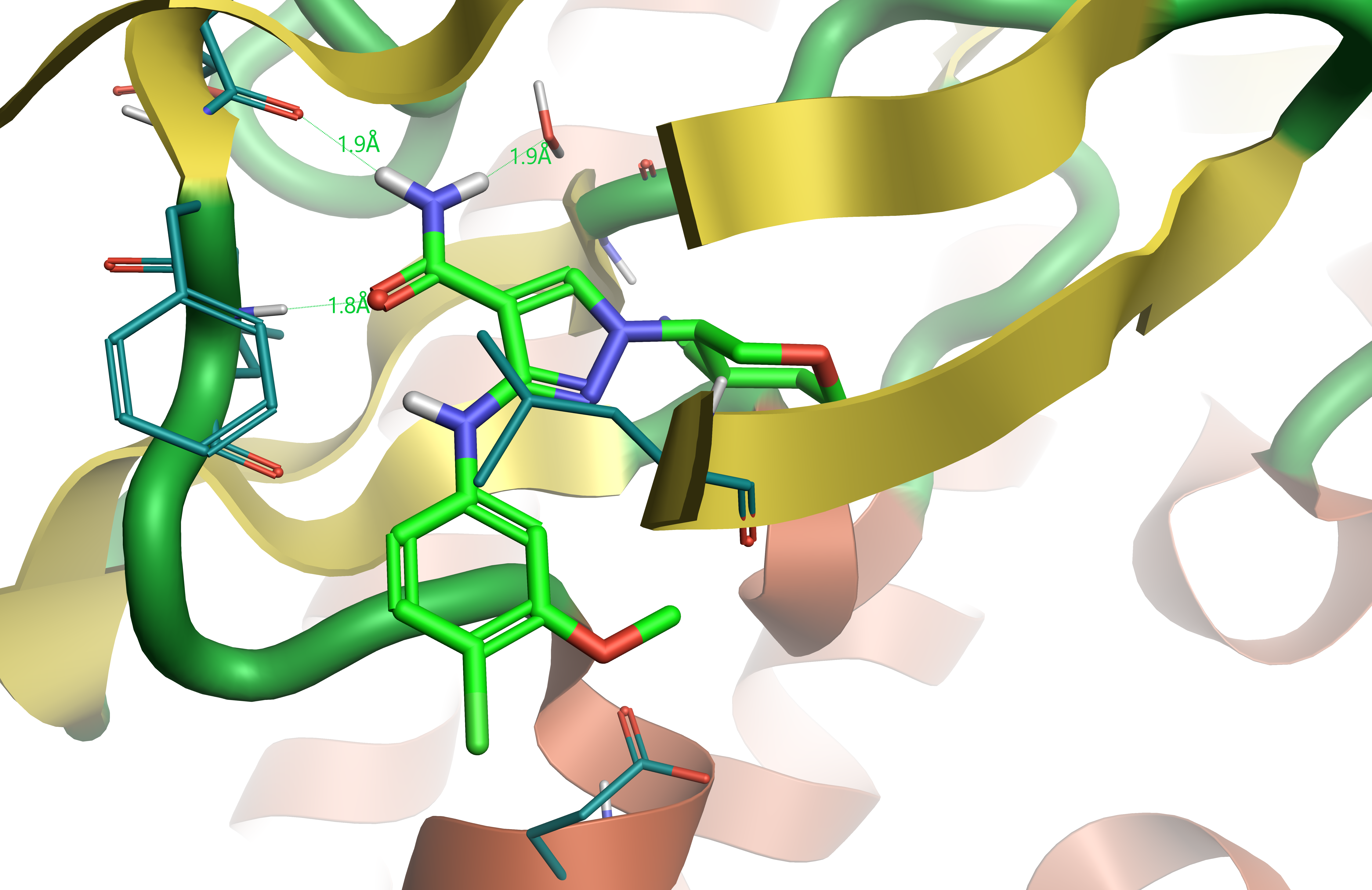 Crystallographic ligand compound 28 bound in JAK1 active site