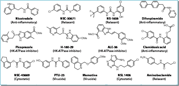 13 result molecules