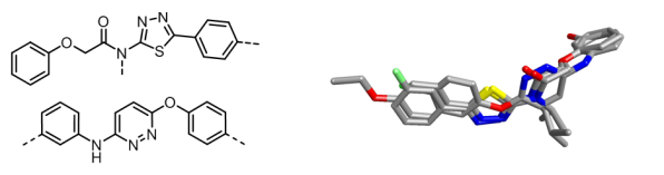 Two active chemotype sets