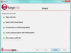 forgeV10.1 wizard