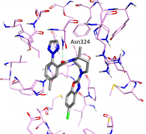 Figure 1 – Crystal structure of Suvorexant bound to the human Orexin 2 receptor