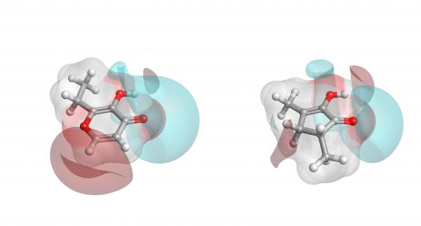 Figure 2_molecular fields around two caramels_ethyl maltol and furaneol